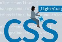 CSS Kullanımı