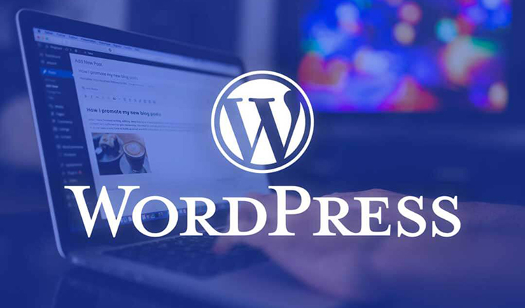 wordpress-dersleri